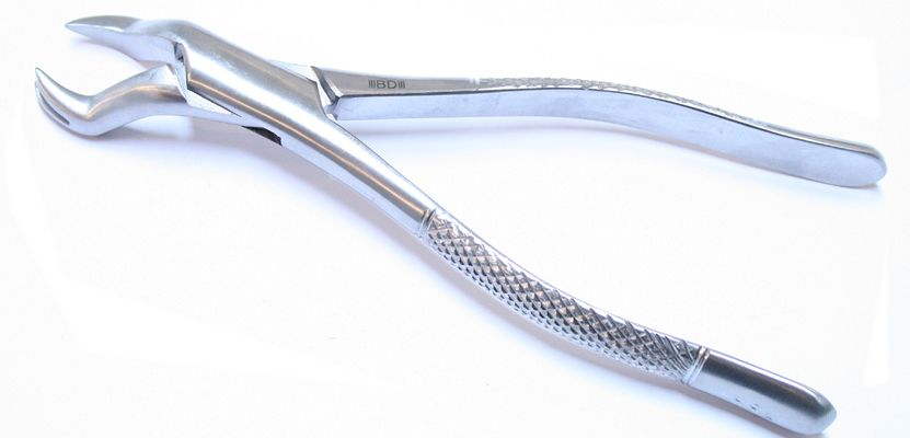 Bdeals American Pattern 88l Dental Extracting Forceps Dental Instruments