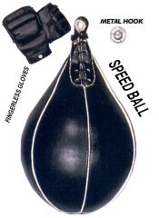 Last Punch Heavy Duty Speed Ball + Gloves &  Metal Hook Brand New
